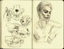 Moleskine by CottonCandyTrip
