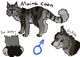 Maine Coon Adopt by Addictivemind