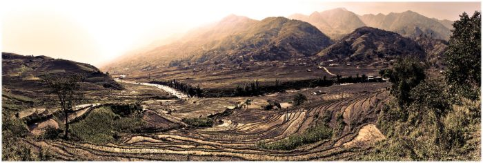 Terraced Rice Fields by Mentasys