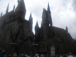The Wizarding World Of Harry Potter by KrazyKat22