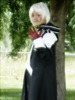 Allen Walker cosplay COMPLETED by Serenochan