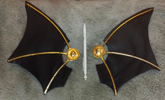 steampunk wings by funkydpression