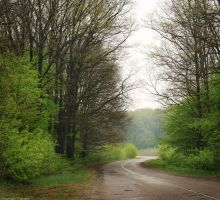 Road to Guta by manroms