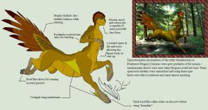 Biology of Mythology Equestrosapian (Centaur) by RavinWood