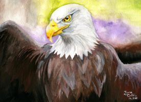 Watercolor Eagle by mrinx