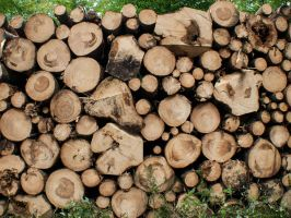 STOCK Stack of wood by Inilein