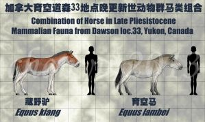 combination of Horse-3 by sinammonite