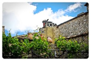 Provence rooftops. by jennystokes
