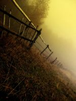 In a fog by Kat-Pagana