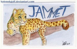 Jammet badge by kotenokgaff