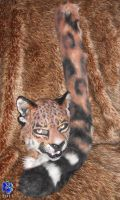 Jag mask and tail for sale by Sharpe19