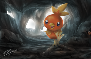 Torchic by TrachaaArMy