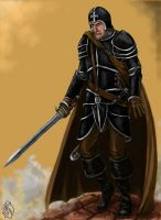 Renaissance Knight by Crowsrock