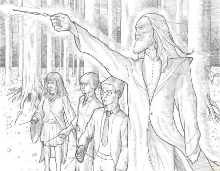 Dumbledore Fight by Chump203