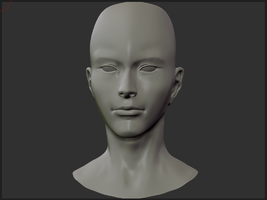 Zbrush Head Practice 2 by wangqr
