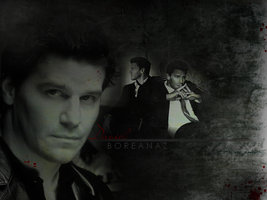 David Boreanaz Wallpaper 2 by S-GB