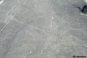 Nazca Lines, humming bird by Manueltson