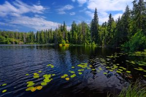 Valaam islands....  _20_ by my-shots