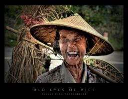 Old Eyes Of Rice by Andrejz