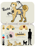 . : Ref Sheet : . - Timotei by Sussurchan