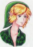 Link... by ShadowTheSkyoftian