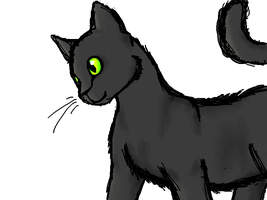 Panther-Cat (I think it's much better.) by WarriorCatkittyclaws