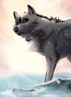 But maybe a wolf can by Anerris