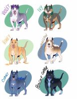 Pibble Adopts by tallix