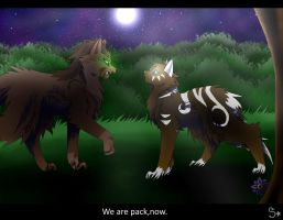 We are pack+Contest by StarlightHL