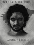 Game of Thrones Portrait Series: Robb Stark by TCampbell1026