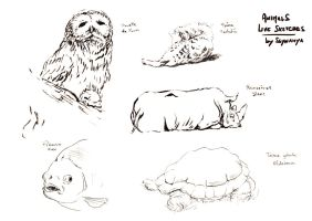 Animals live sketches 02 by Ssynahya