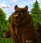 Grumpy Bear by RogueLiger