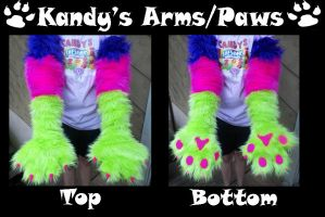 Kandy's Arms/Paws Finished by BanditTheBat