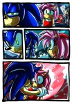 Sonic And Amy by darkspeeds