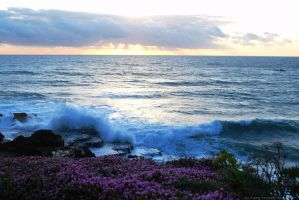 Ericeira at the End of the Day by Ana-D