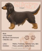Nintendogs - Gidget by sealle