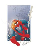 SpiderMan made 4 fun by makampo