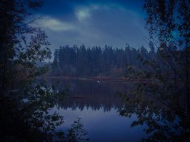 Darker Beauties of a Lake by Dreamcraeft
