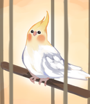 Borb Paint by 0Lightsource