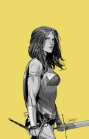 Wonder Woman Yellow by Dan-Mora