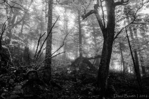 Nature's breath through my haunted dreams by InOnesMindsEye