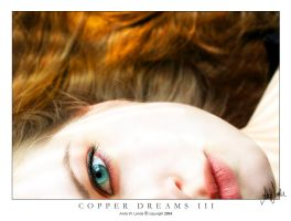 Copper Dreams III by neeta