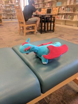 Salamence at the Library by NovaKaru