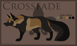 Crossfade Ref. 2013 by Imaje-Train