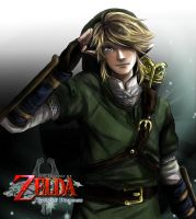 twilight princess link again by vanillatte54