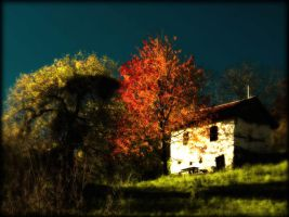 Lonely house by Cubaya