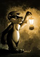 Badger by charco