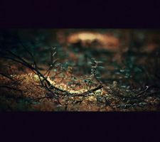 thing about ground by lafaette