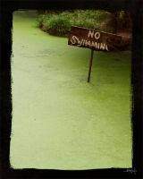 no swimming by dubtastic