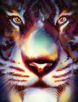 Tiger In The Stars by MelodyNieves